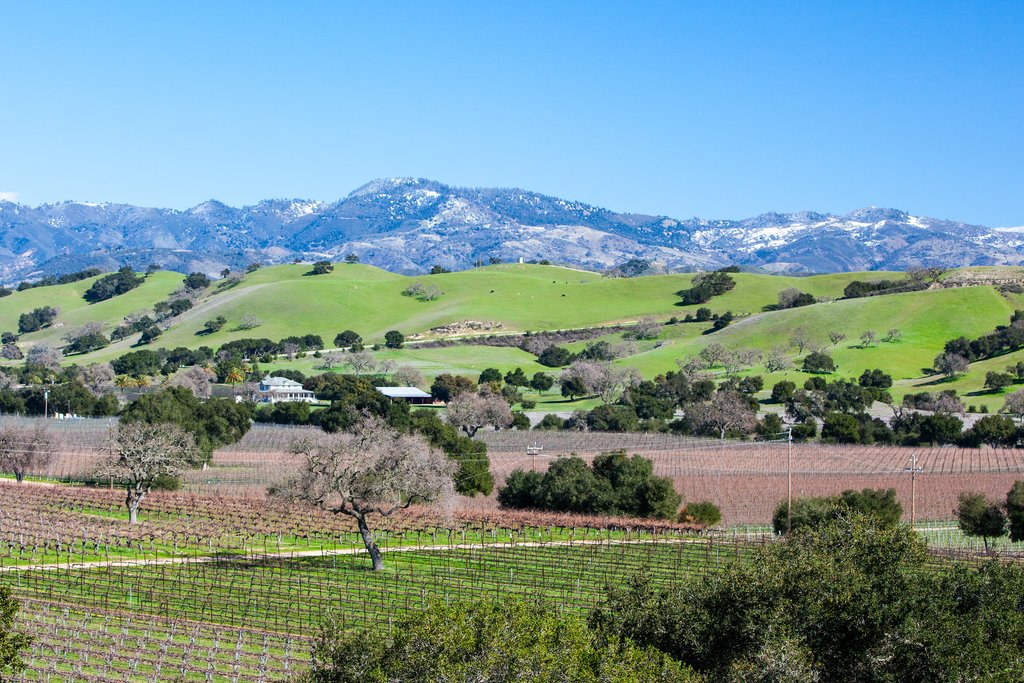 Santa Barbara wine region
