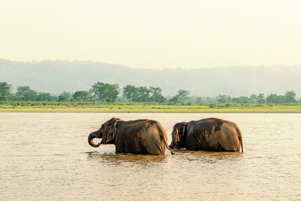 How to Get from Kathmandu to Chitwan National Park