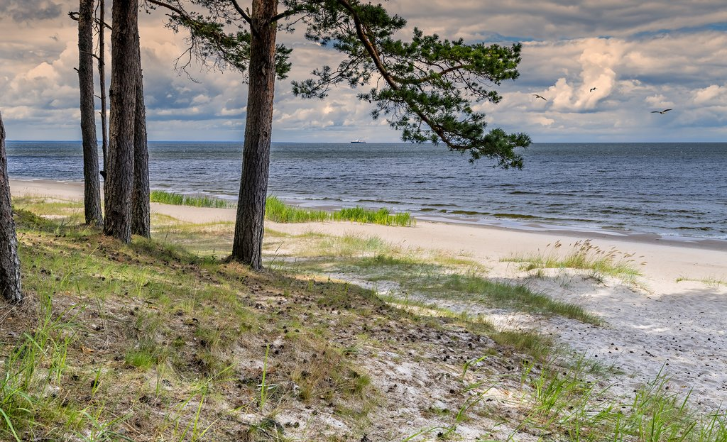 Beaches of Jūrmala