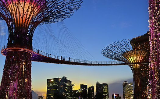 The walkway of Gardens by the Bay affords panoramic views of the skyline and surrounding Marina Bay area   Gardens by the Bay
