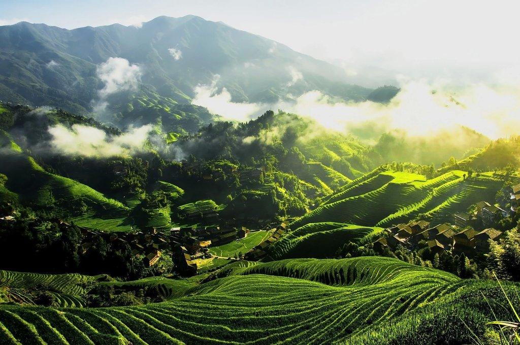 Longsheng Rice Terraces resemble a dragon's scales