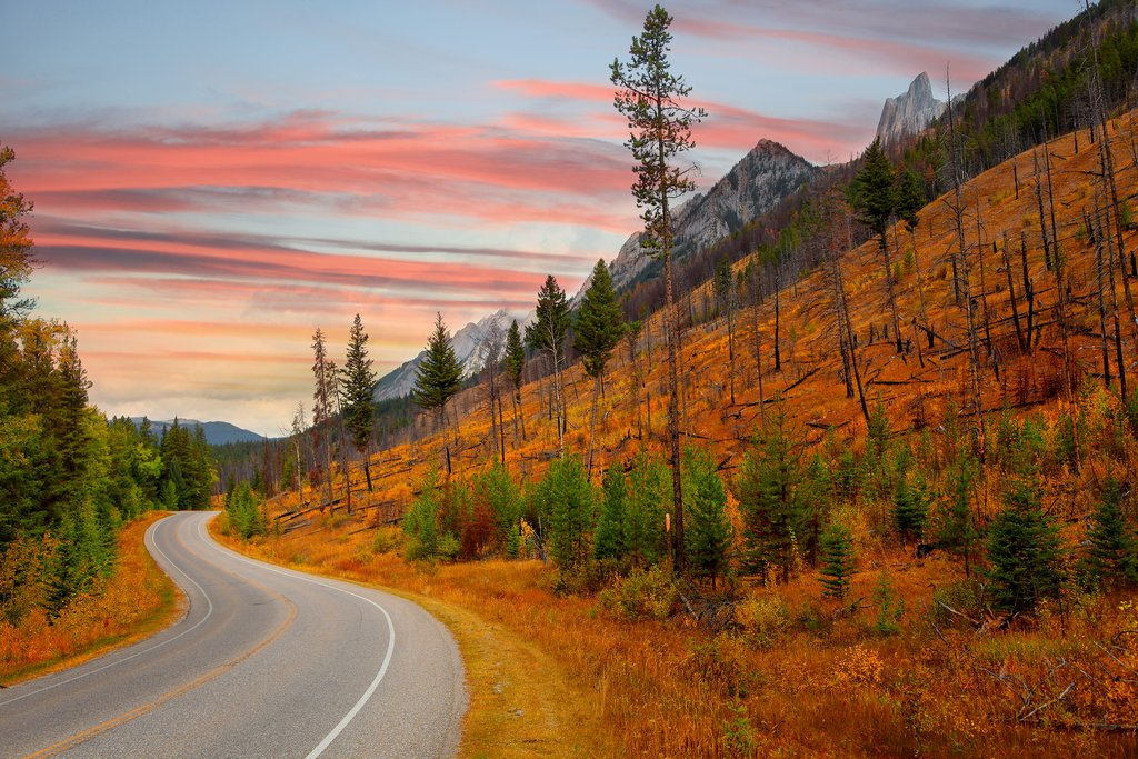 The scenic Bow Valley Parkway