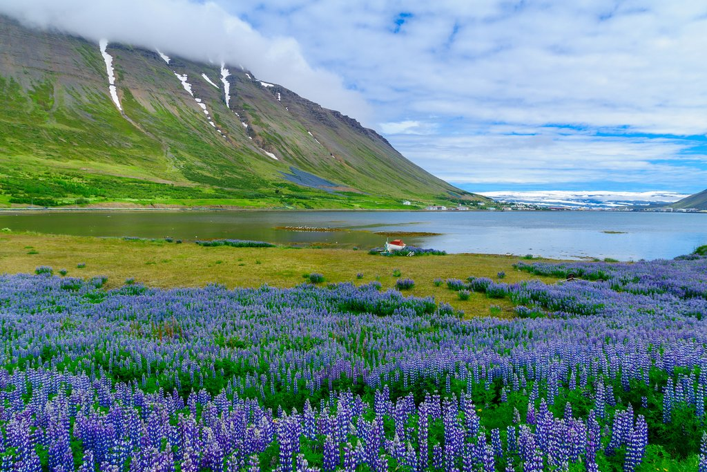 Isafjordur in the West Fjord Region, Iceland