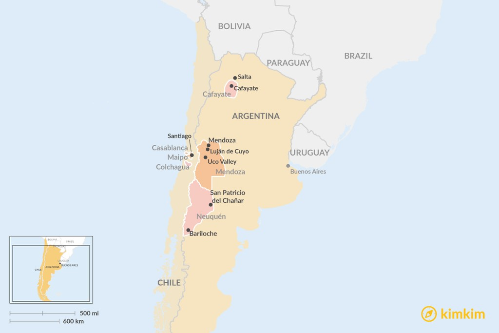 Map of Wine Regions in Argentina and Chile: Which is Best For You?