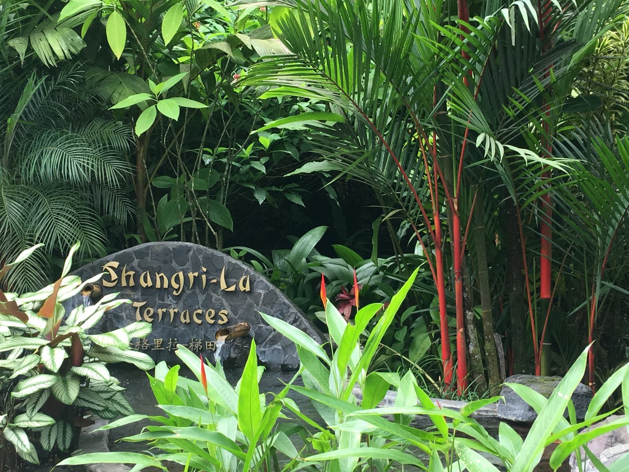 Shangri La Gardens | Photo taken by Rachel H