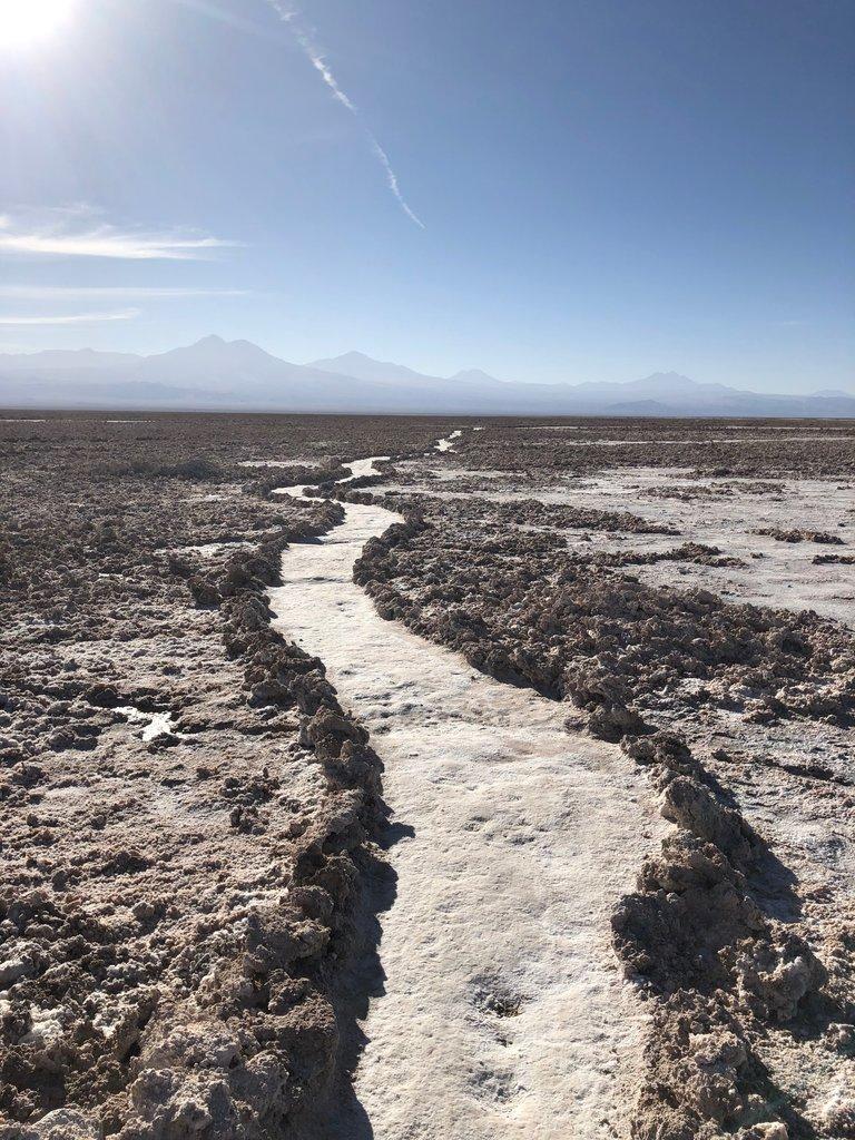 Path in Salar de Atacama | Photo taken by Melody B