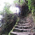 Stairway to Heaven | Photo taken by Kristin M