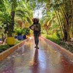 Jardin Majorelle | Photo taken by Jordan A
