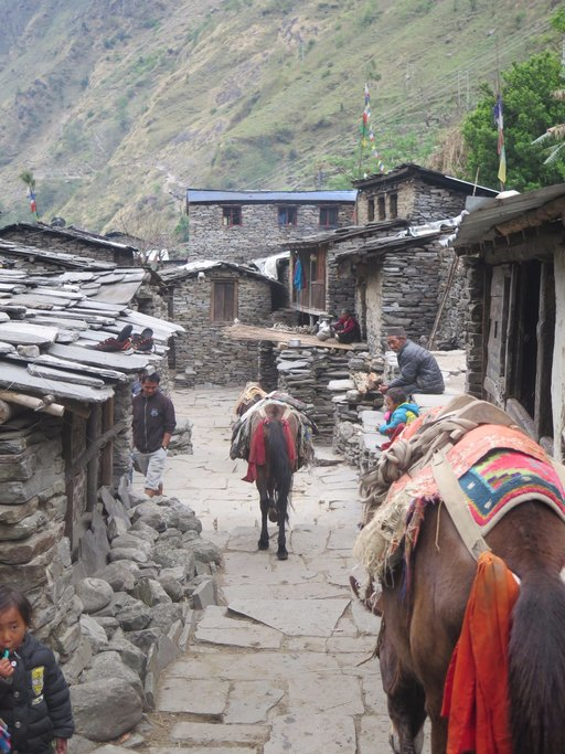 Street life on the Manaslu circuit | Photo taken by Anna W