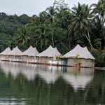 View from the River of 4 Rivers Floating Lodge | Photo taken by Bharat P