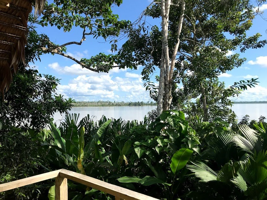View of the Amazon River from our balcony | Photo taken by Sophie E