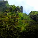 Iceland green | Photo taken by Eneken M