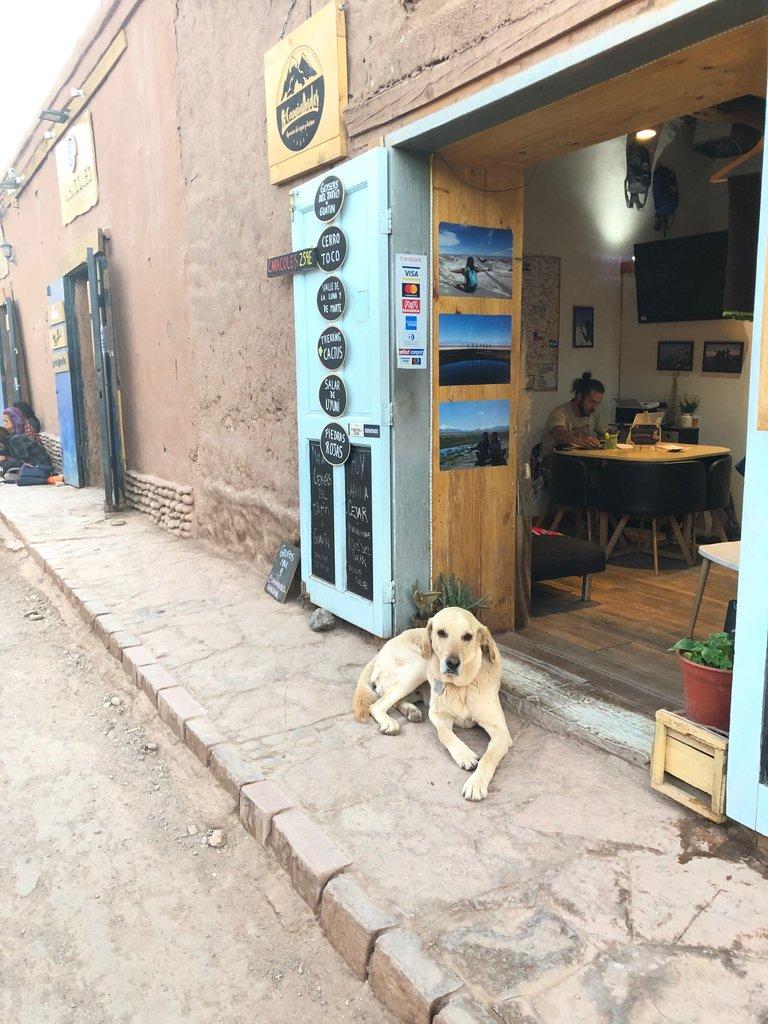 Streets of San Pedro de Atacama | Photo taken by Melody B