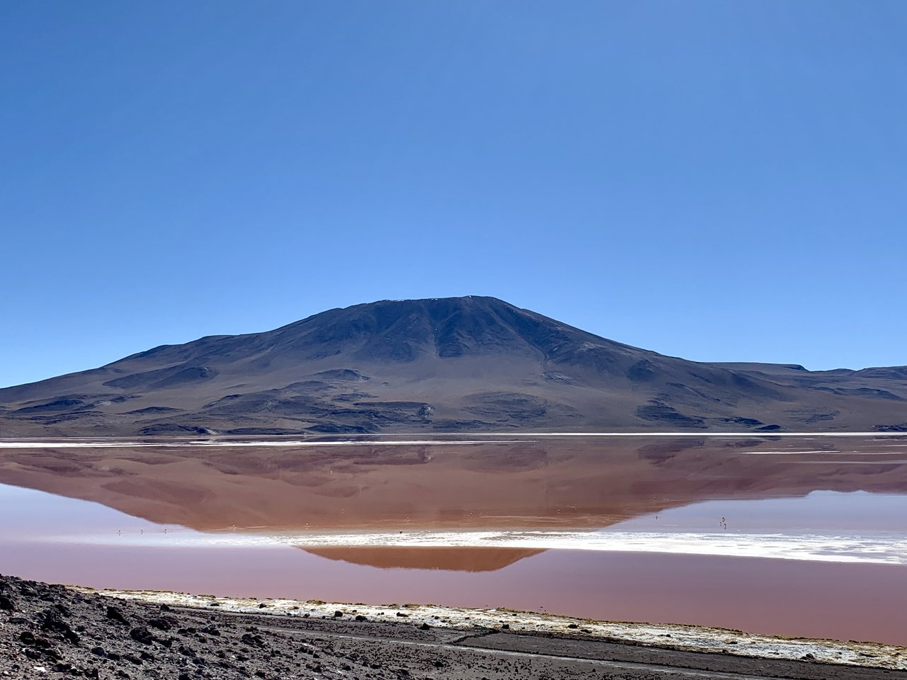 Laguna colorada | Photo taken by Flaminia R