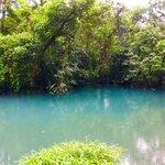 Rio Celeste-agua con gas  | Photo taken by Rachel H