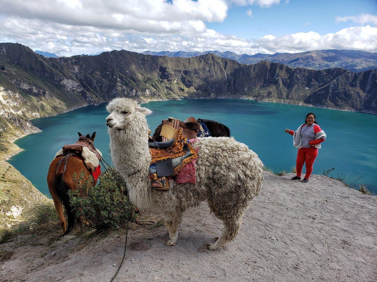 Quintessential Ecuadorian mountain scene | Photo taken by Peter S
