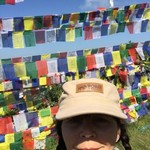 Buddhist prayer flags in tree tops | Photo taken by Janet M