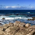 Cape of Good Hope | Photo taken by Missy G