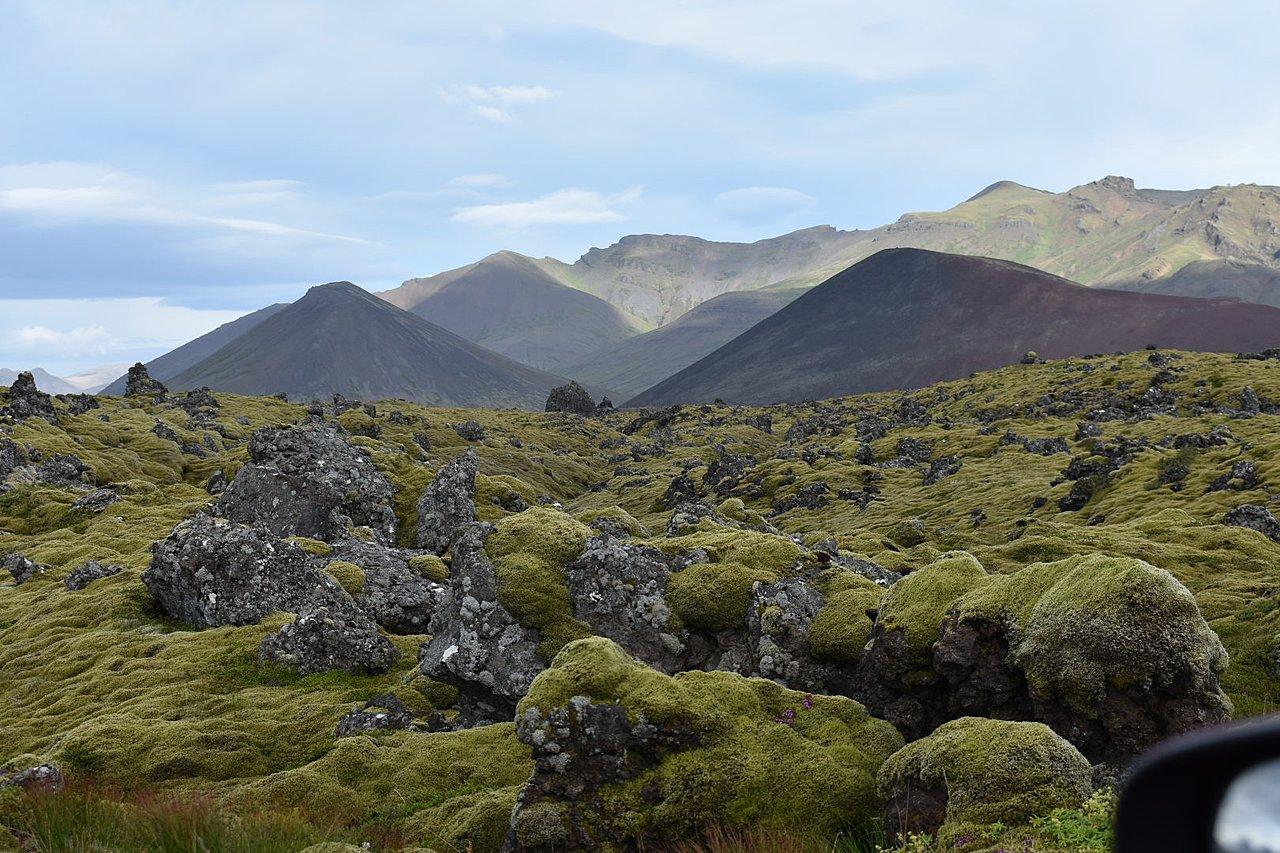 Berserkkjarhraun Lava Field | Photo taken by William R