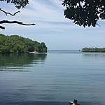 Laguna where we swan at night to see the phytoplankton | Photo taken by David B