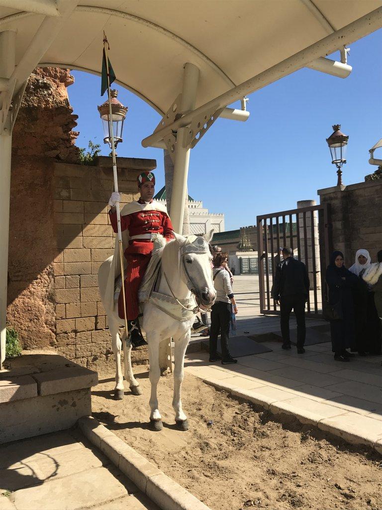 Mausoleum of Mohammed V guard   Photo taken by Chris M