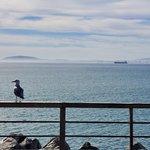 V&A Waterfront | Photo taken by lilia s