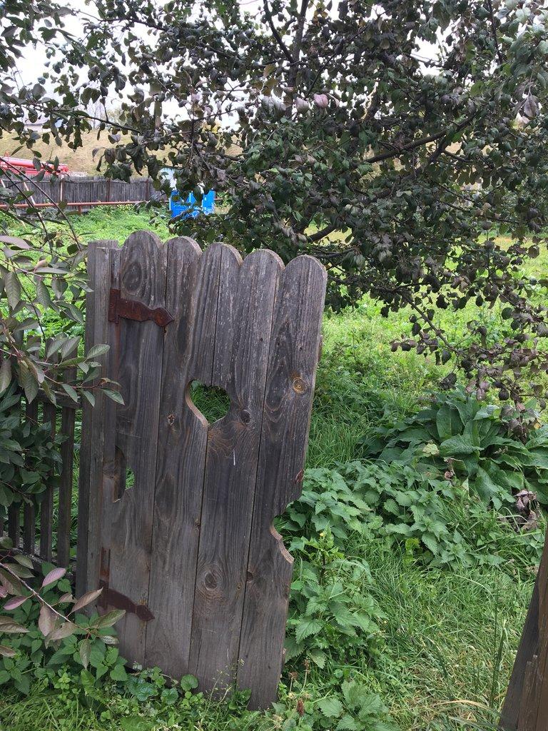 Gate to garden, Suzdal | Photo taken by Diane P