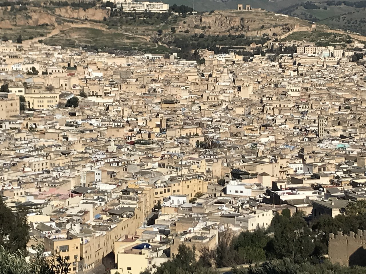 Fes Medina from Jnan El Ouard | Photo taken by Chris M