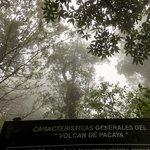 Fog on the way up Pacaya | Photo taken by BRAD K