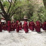 Debating monks at the Sera Monastery in Tibet | Photo taken by Andrew B