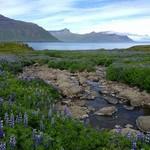 Near Seydisfjordur | Photo taken by Eva S