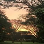 Sunrise  | Photo taken by Michele B
