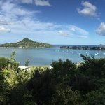 Tairua pana | Photo taken by Clare F