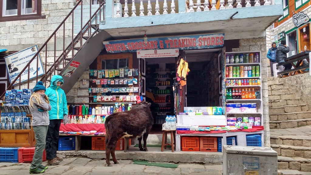 Shopping in Namche | Photo taken by Dorine H