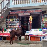 Shopping in Namche | Photo taken by Dorine Harris