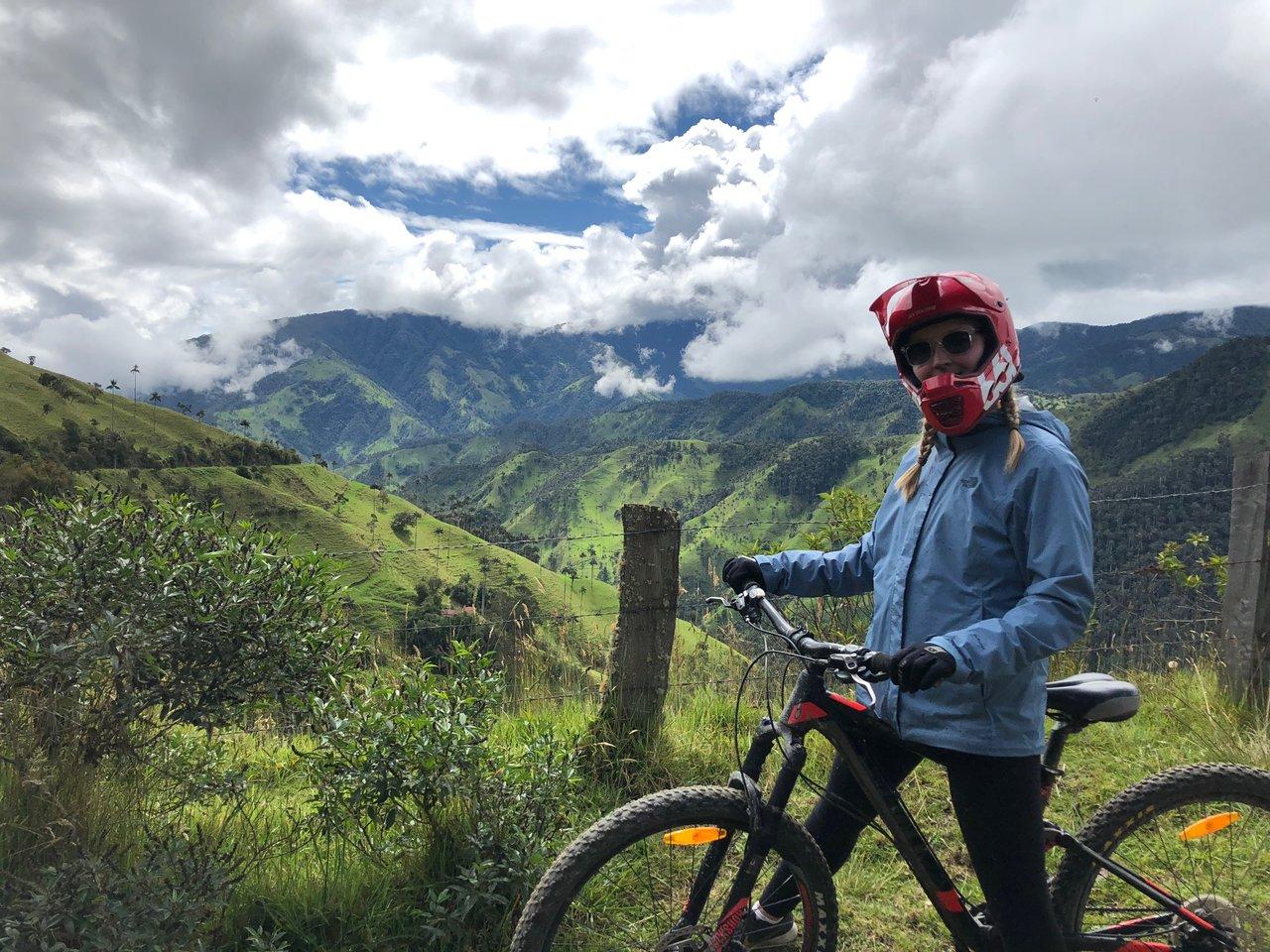 Wax Palms, Salento Cycling | Photo taken by Rachel B