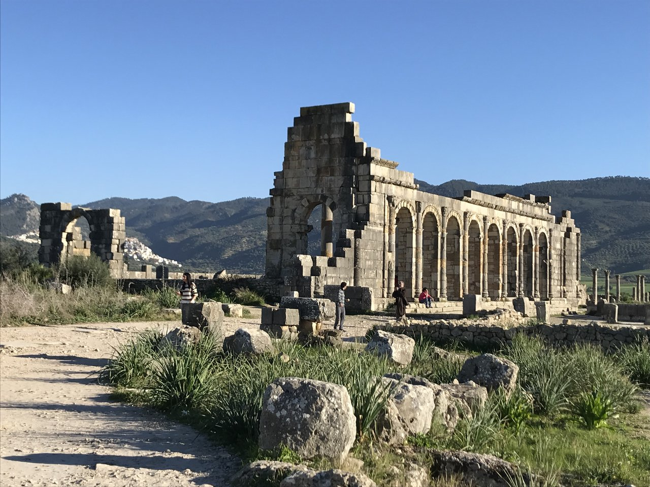 Volubilis | Photo taken by Chris M