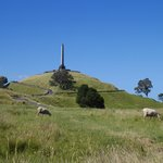 Bucolic One Tree Hill | Photo taken by Clare F