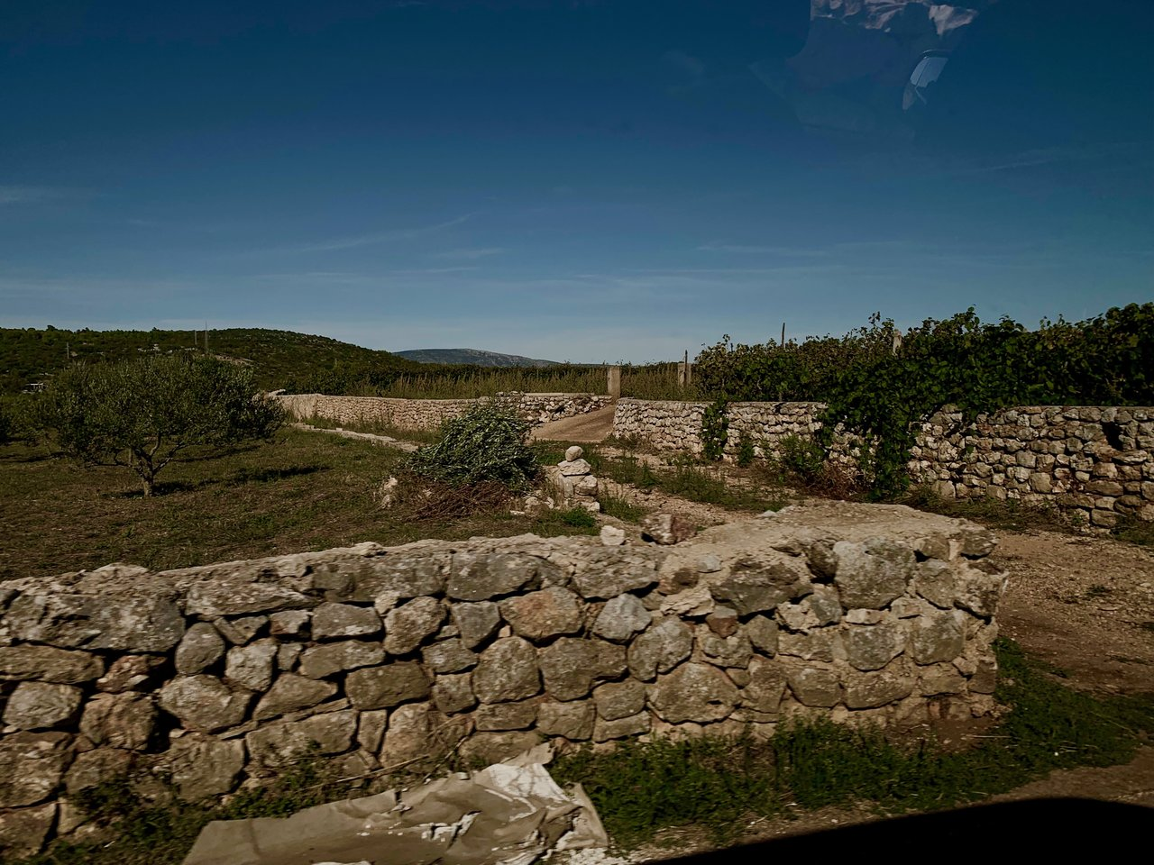Stone walls dating back to ancient Greek settlers | Photo taken by Eva W