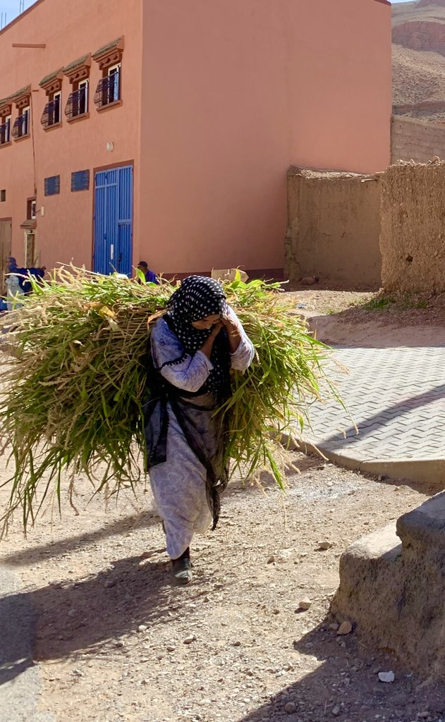 The burden of Berber life | Photo taken by Rod K