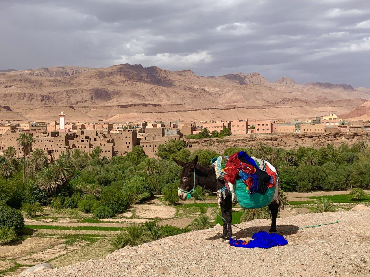Desert transport  | Photo taken by Rod K