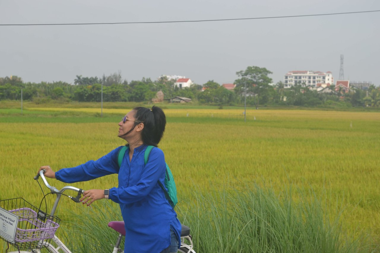 Rice filed near the hotel  | Photo taken by Seng Aung S