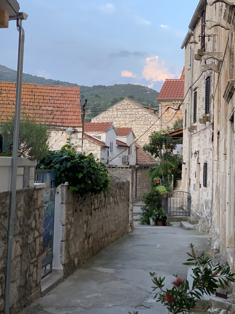 A neighborhood street in Hvar | Photo taken by Stephen G