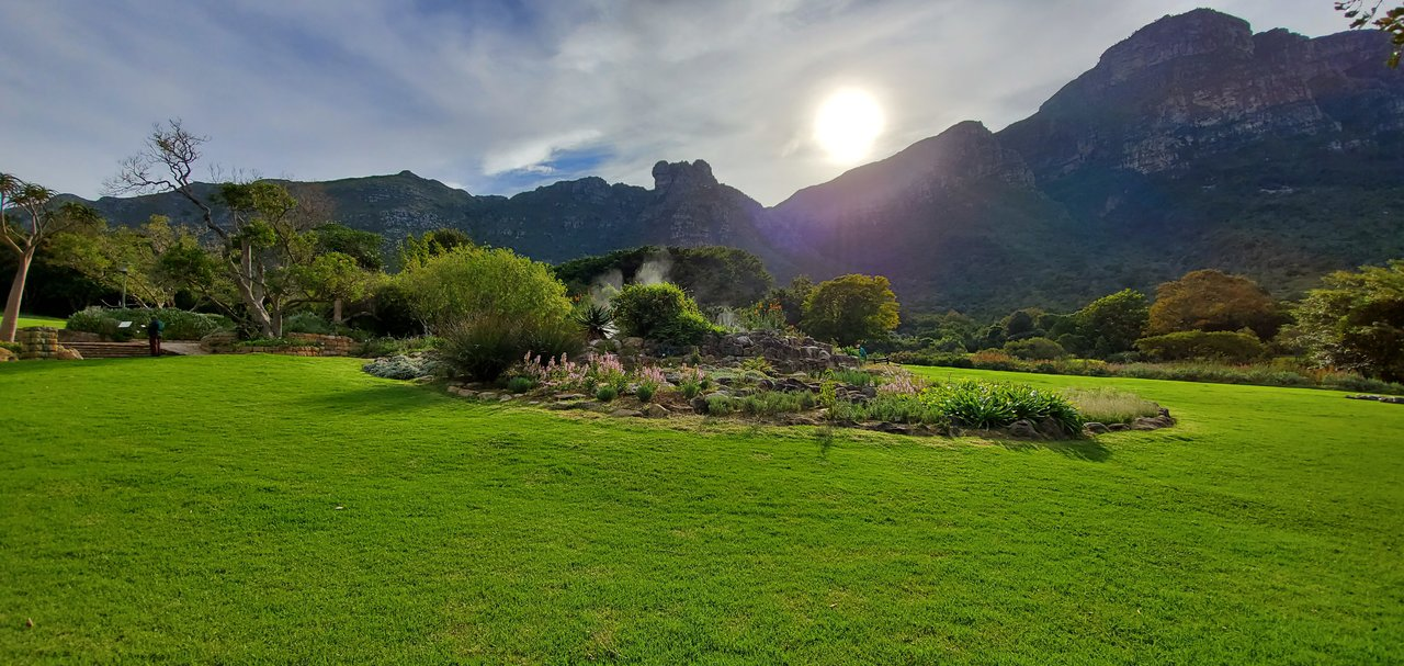Kirstenbosch National Botanical Garden | Photo taken by lilia s