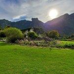 Kirstenbosch National Botanical Garden | Photo taken by lilia s