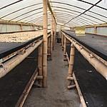 Drying shed | Photo taken by David B