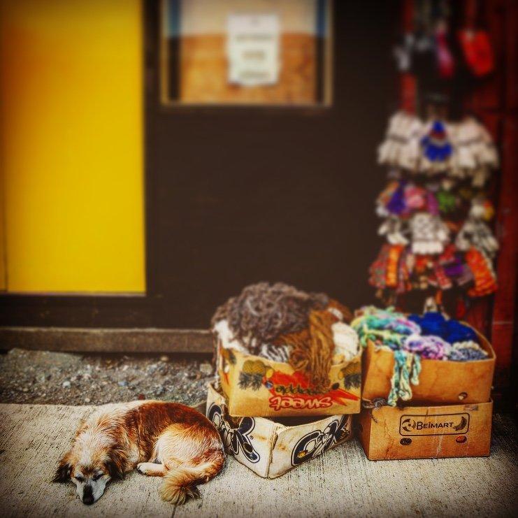 Chiloé village | Photo taken by Beth S