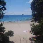 View from a loo...Cathedral Cove | Photo taken by Clare F