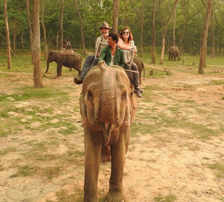 Elephant safari in Chitwan | Photo taken by Kim C