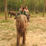 Elephant safari in Chitwan | Photo taken by Kim Coutts